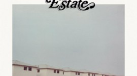 real-estate-days-album-cover